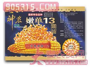 神农-嫩单13农资招商产品