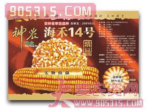 神农-海禾14号农资招商产品